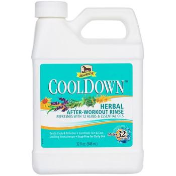 CoolDown 946 ml